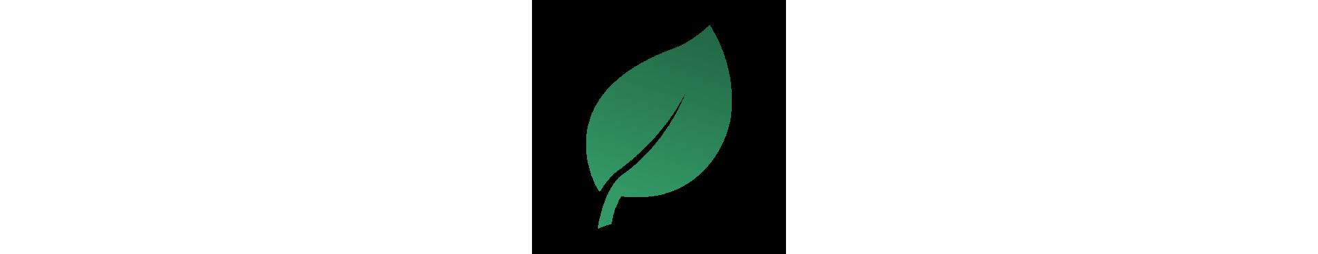 Tè verde in foglia
